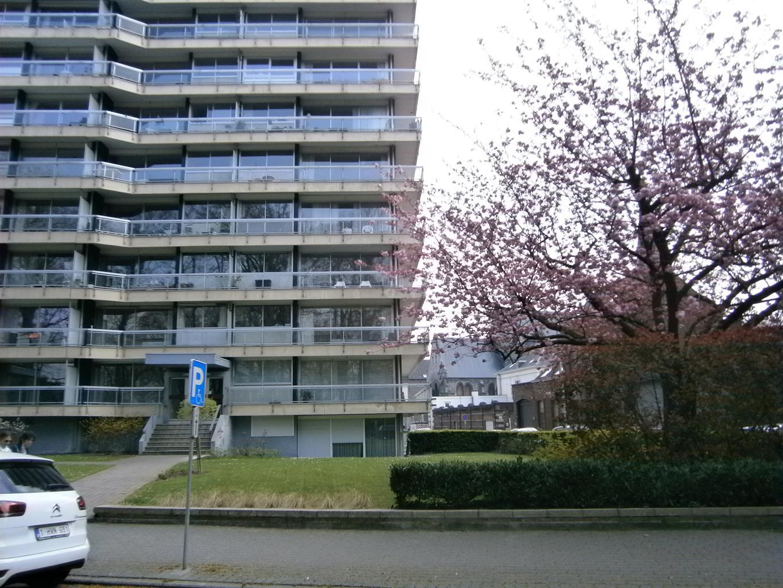 Rez-de-chaussée - Tournai - #4296082-0