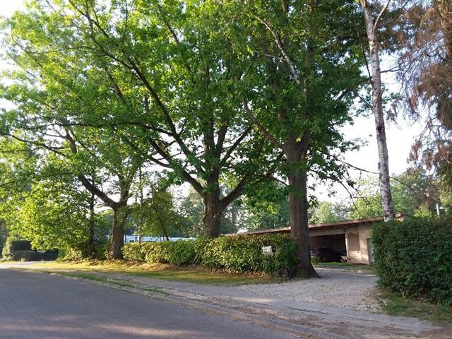 Villa - Rhode-Saint-Genese - #4091281-25