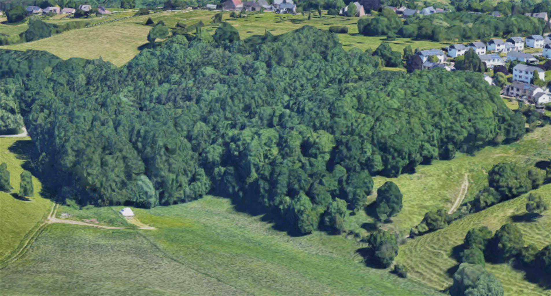 Bois - Fléron - #4166222-2