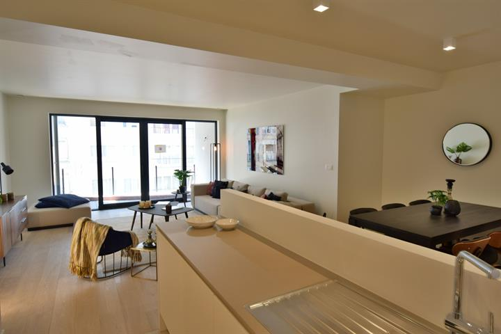 Commercieel gelijkvloers - Ixelles - #4243876-9