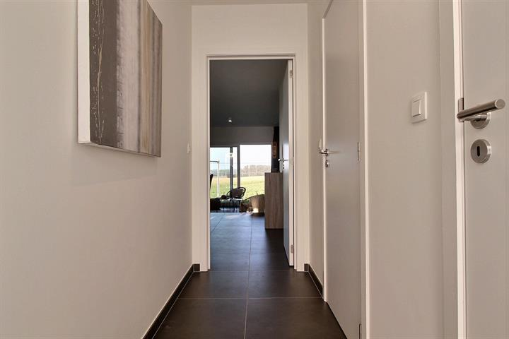 Huis - Asse - #4266486-9