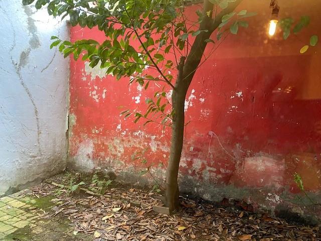 Maison - Bruxelles - #4280127-11