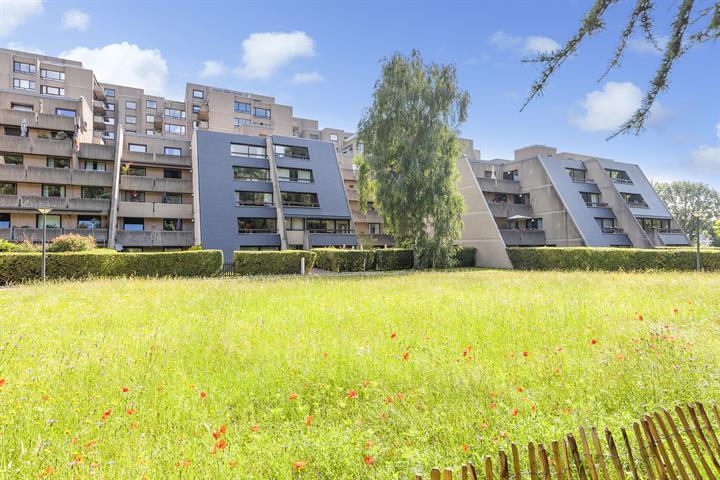 Appartement - Woluwe-Saint-Lambert - #4419521-19