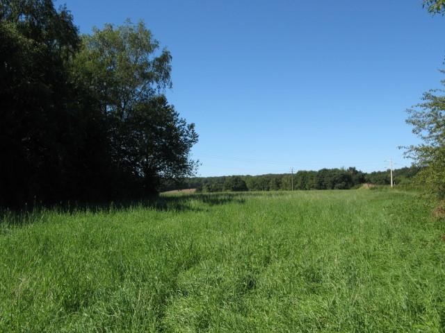 Terrain à bâtir - Florennes Morialmé - #2660641-4
