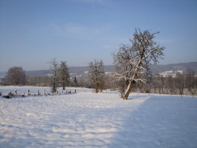Baugrundstück - Gemmenich - #1709610-7