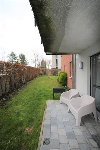 Rez-de-chaussée - Montzen - #4243240-0