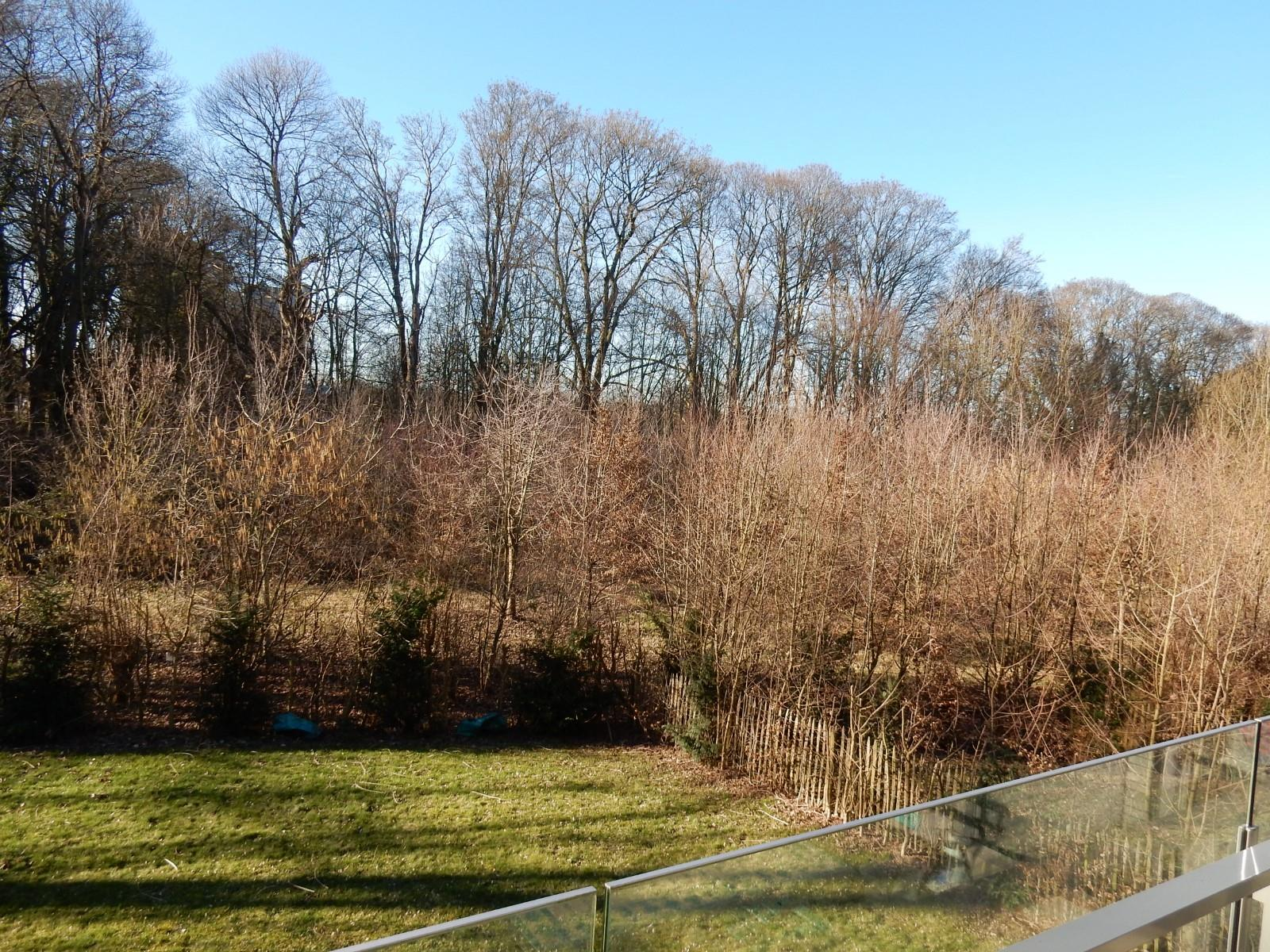 Exceptional apartment  - Uccle - #4051009-20