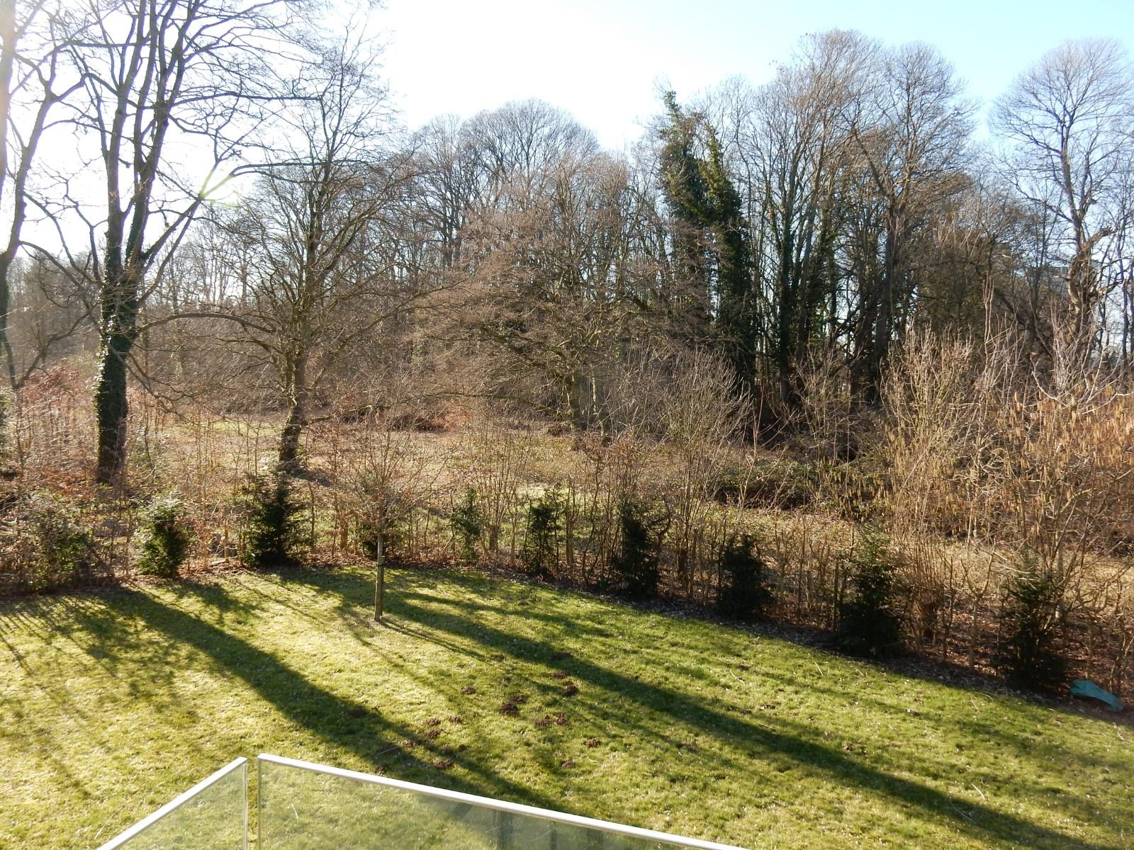 Exceptional apartment  - Uccle - #4051009-19