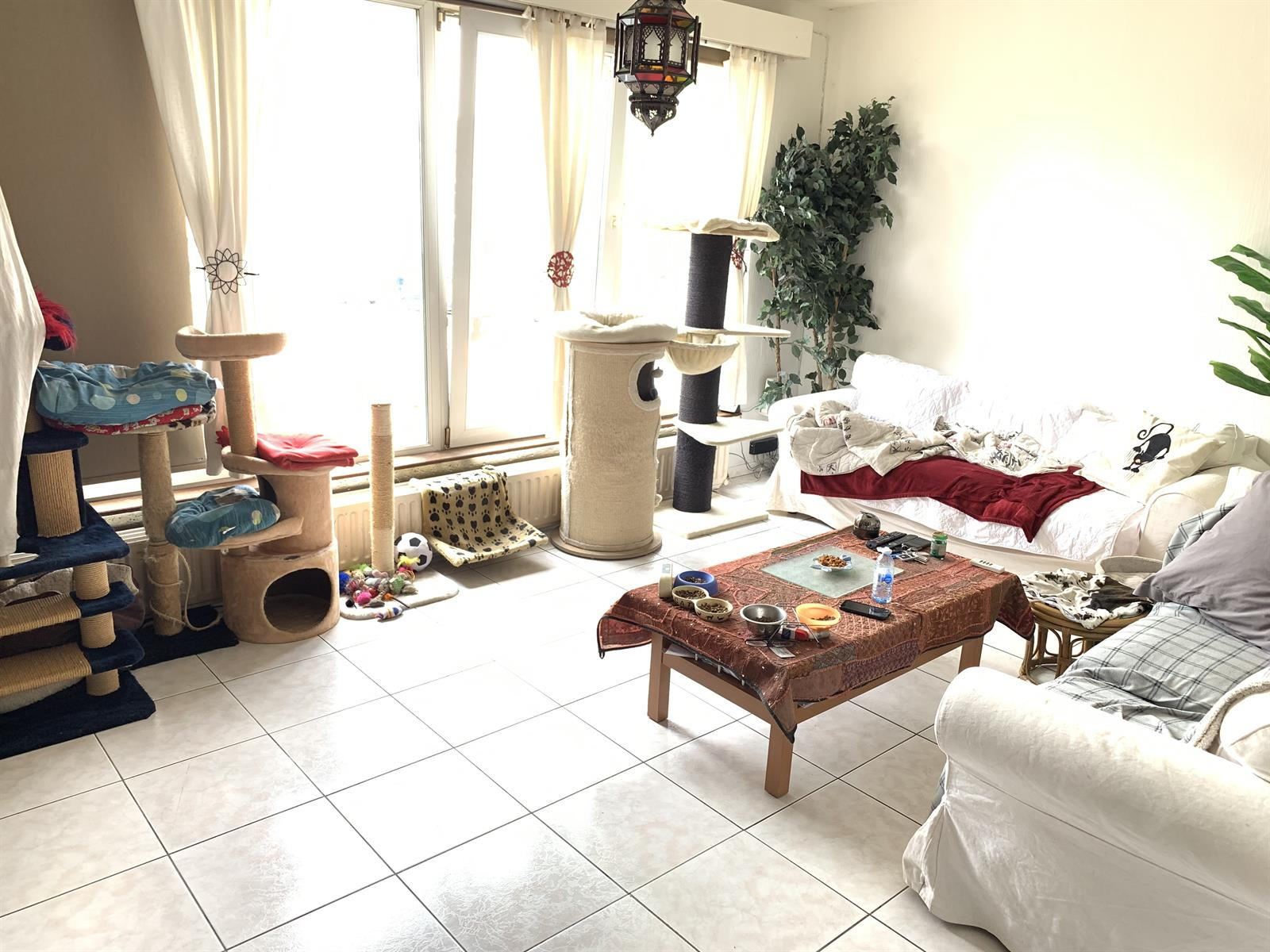House - Grimbergen Strombeek-Bever - #4374753-3