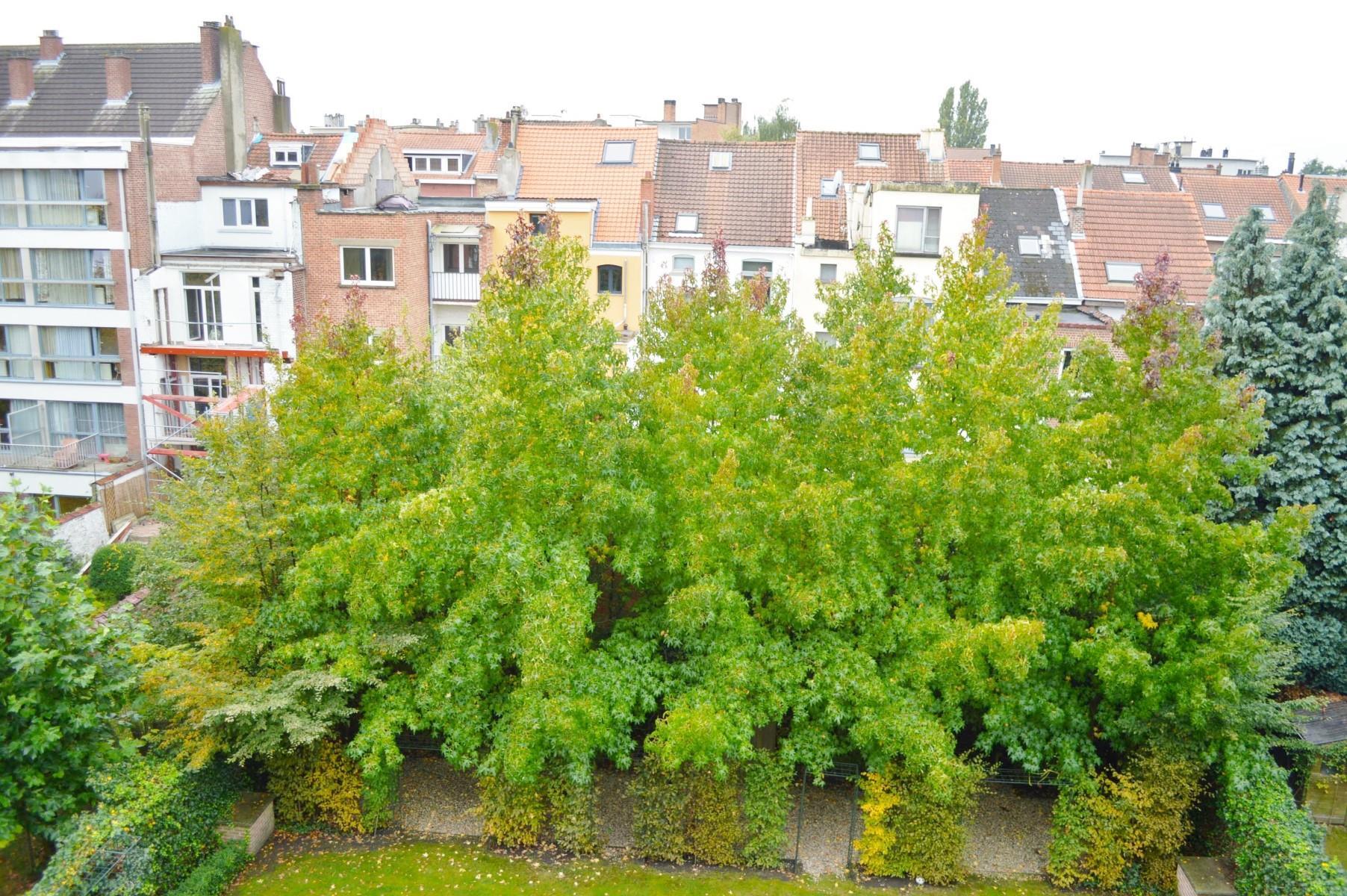 Appartement exceptionnel - Woluwe-Saint-Pierre - #4433517-35