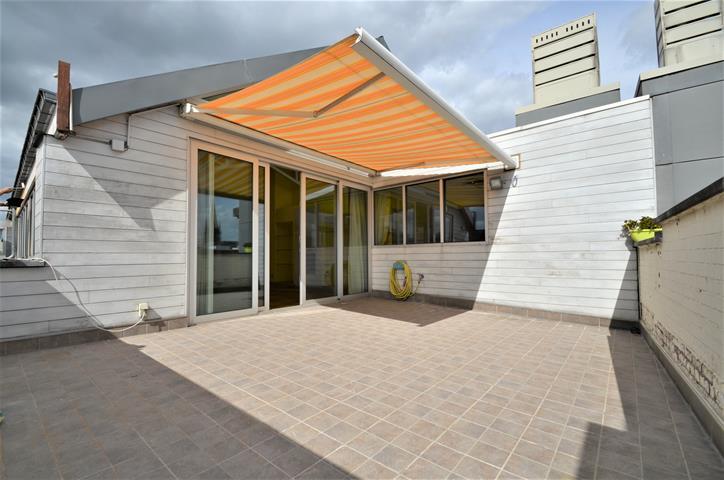 Penthouse - Tournai - #4140626-3