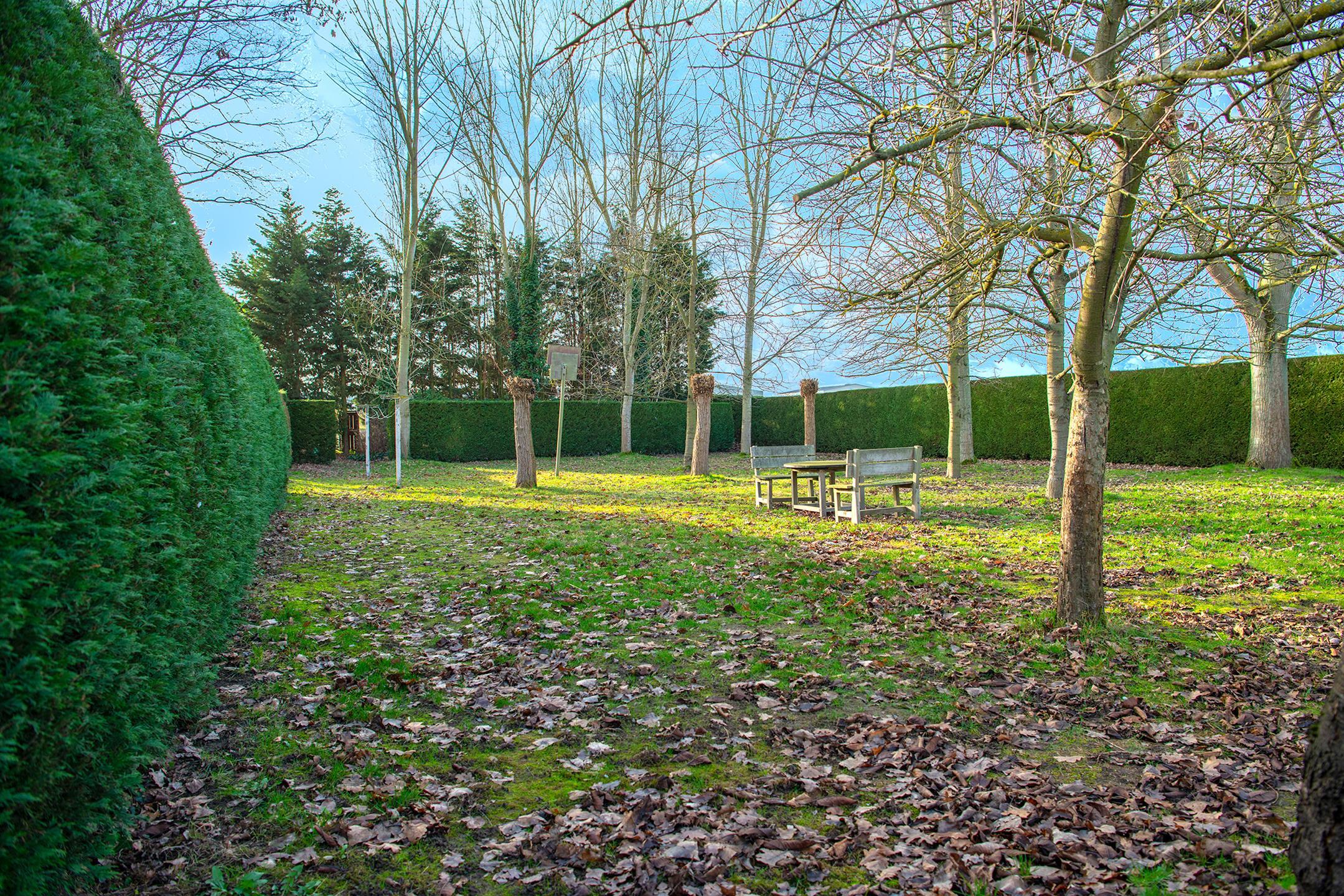 Villa - Kampenhout - #3637808-24