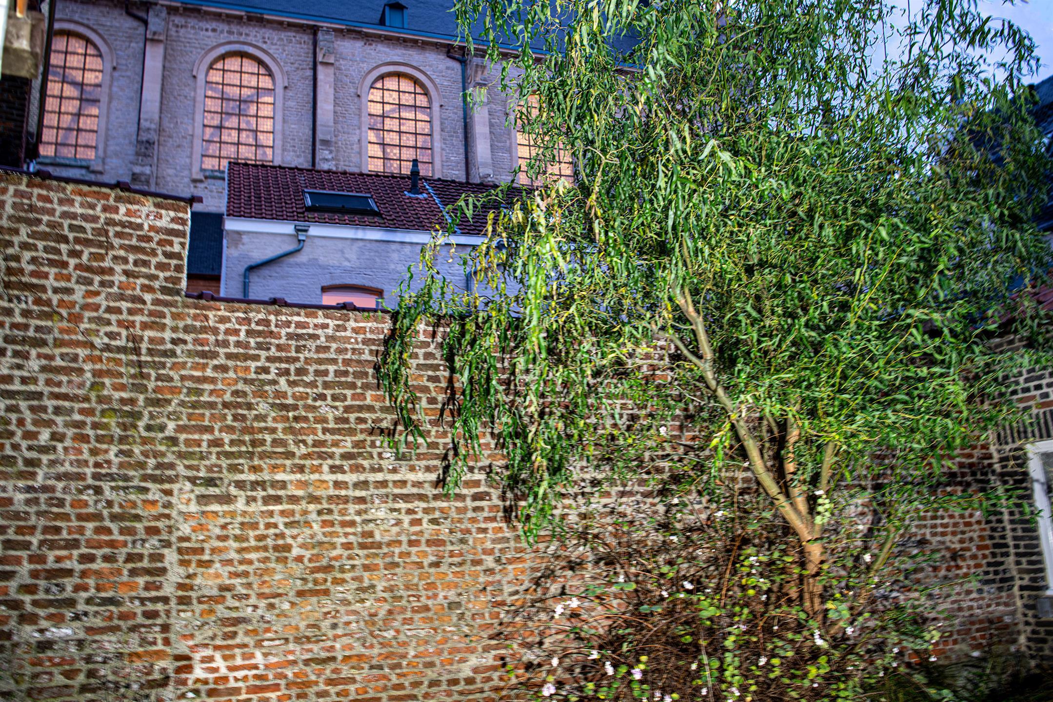 Charmant huis - Mechelen - #4210278-4