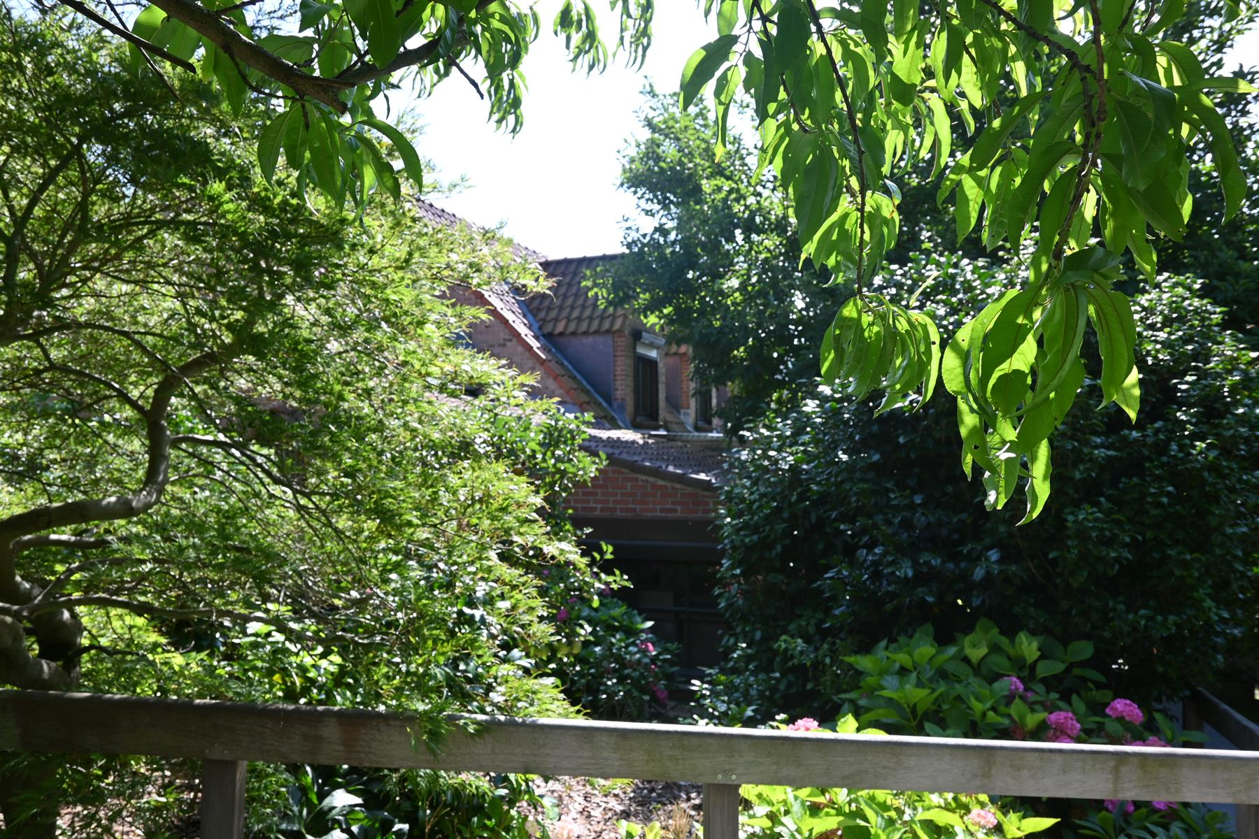 Villa - Wavre - #4455503-12