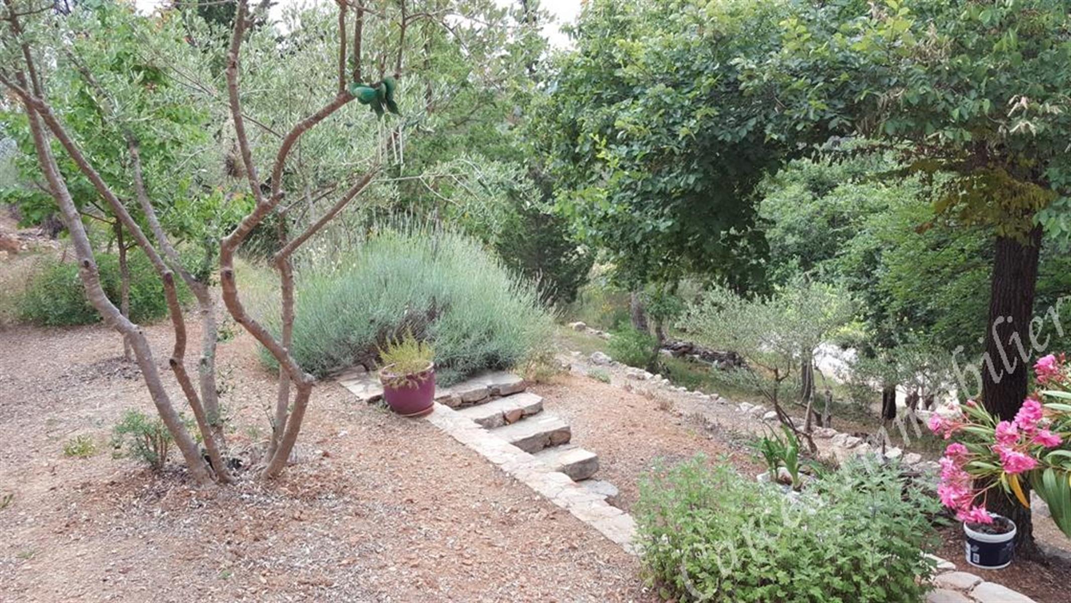 Villa - MONTFORT SUR ARGENS - #3627684-7