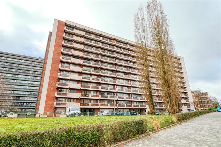 Appartement - Molenbeek-Saint-Jean - #3701277-11