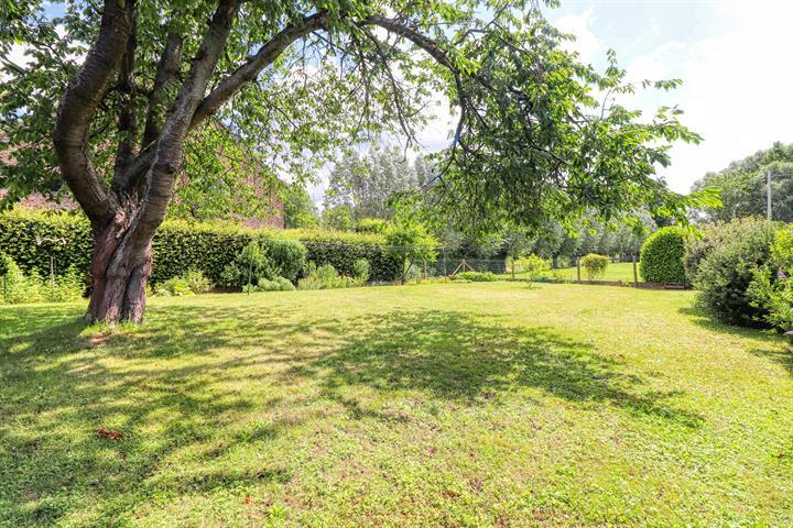 Villa - Dilbeek - #4090459-36
