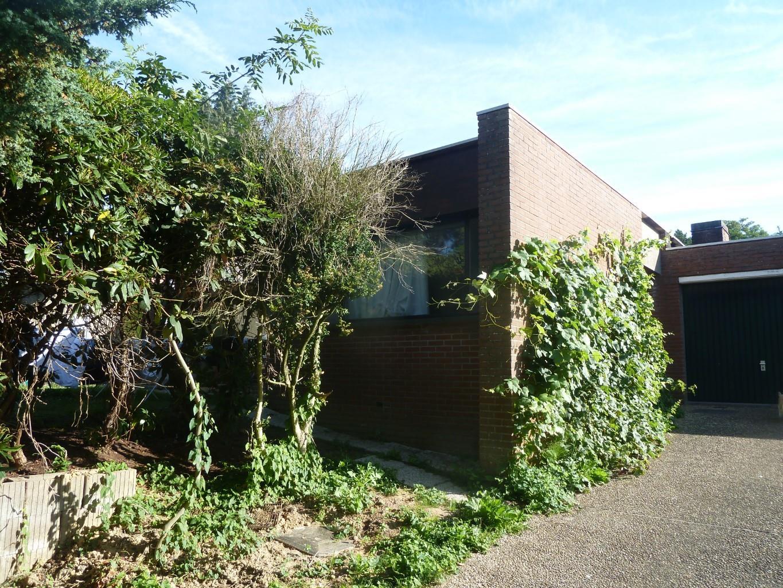 House - Tervuren - #4002226-2