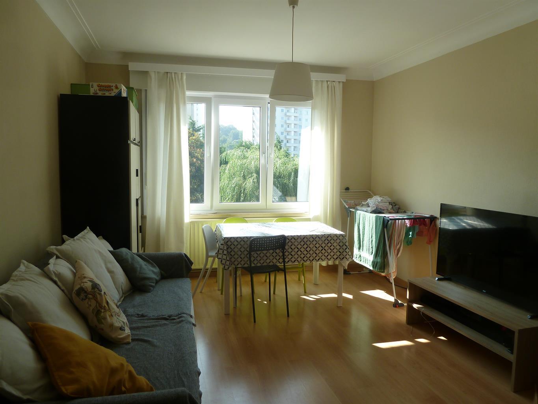 Appartement - Sint-Lambrechts-Woluwe - #4164837-1