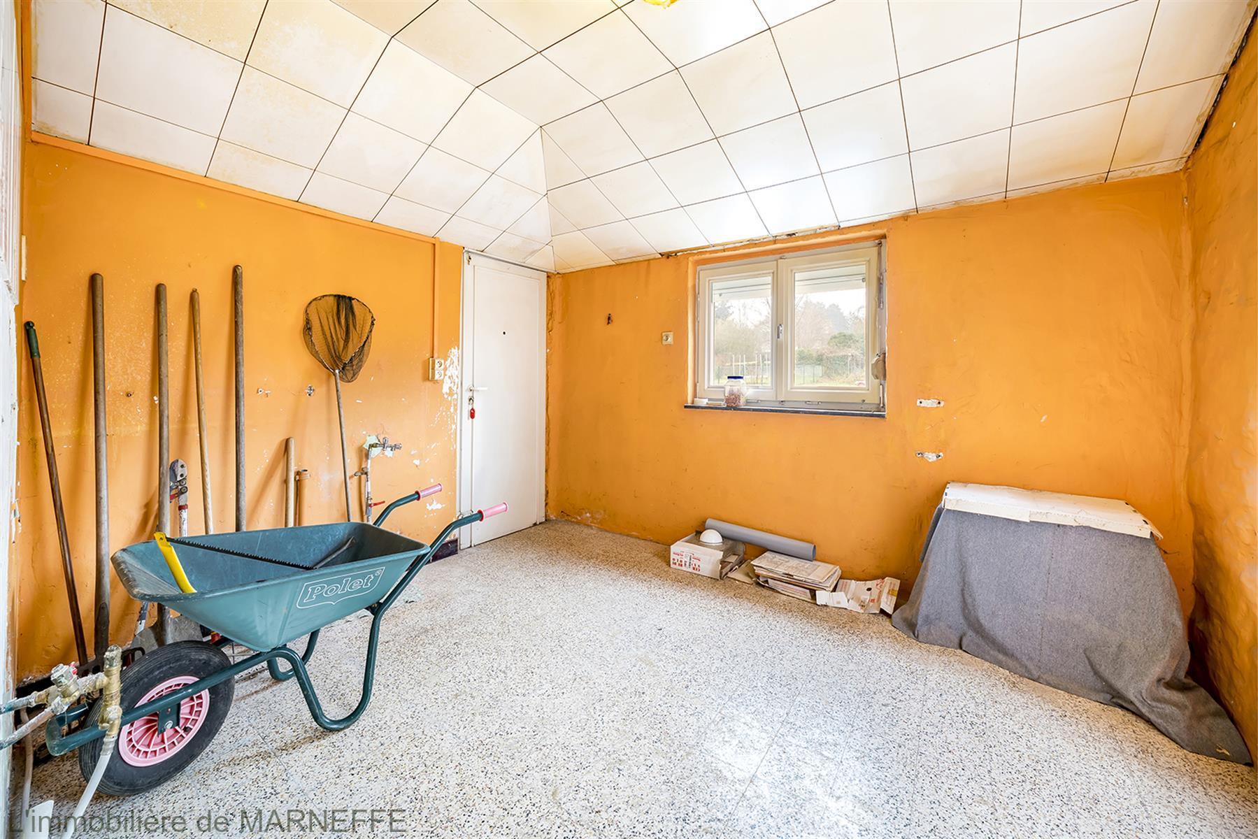 Maison - Wanze - #3703246-63