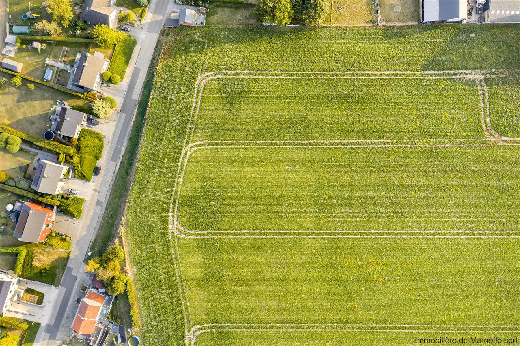 Terrain à bâtir - Berloz - #4163528-24
