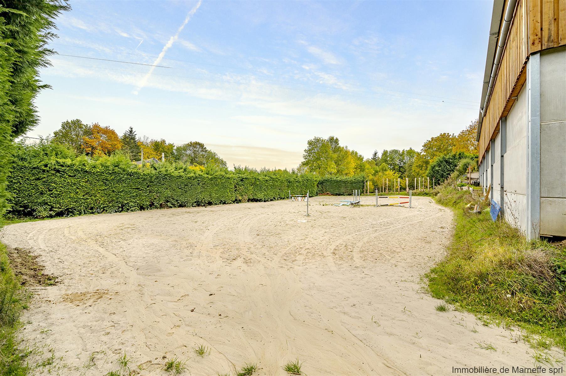 Fermette - Villers-le-Bouillet - #4189834-41