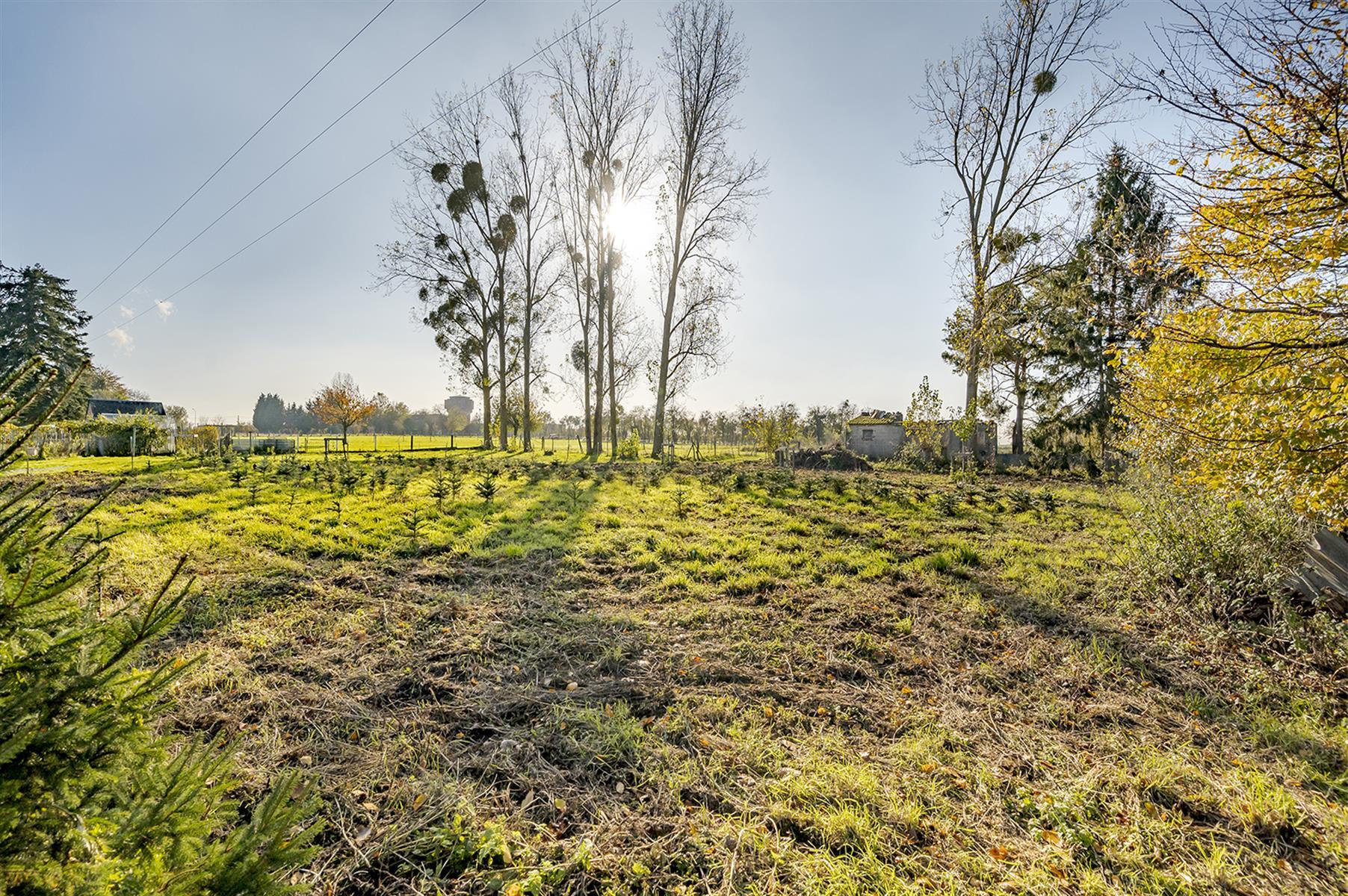 Terrain à bâtir - Villers-le-Bouillet - #4207036-3