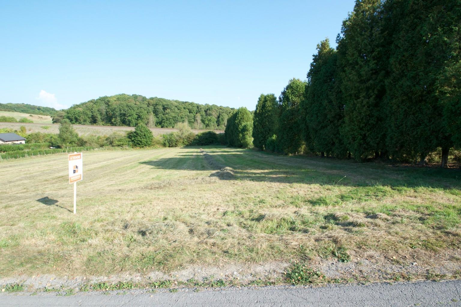 Terrain à bâtir - Philippeville Neuville - #2689457-1