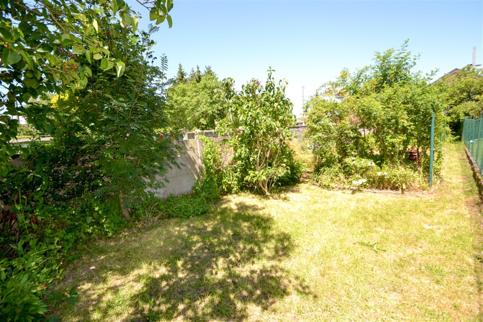 Maison - Anderlues - #3783813-9
