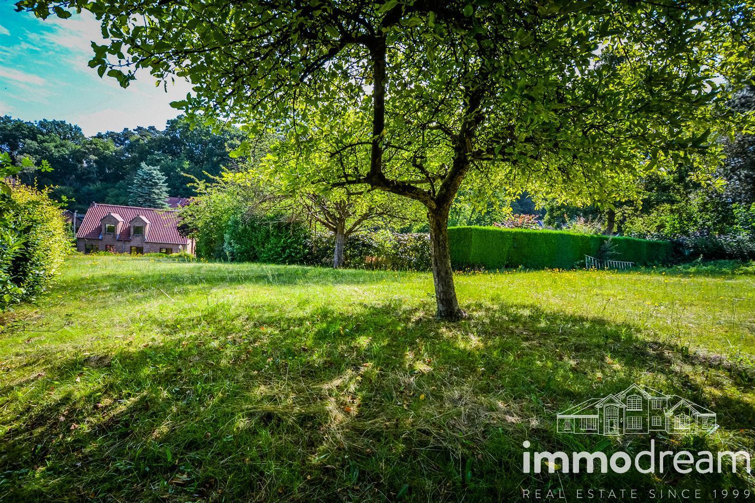 Villa - Wavre - #4130596-12