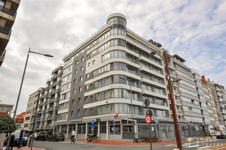 Gemeubeld appartement met zijdelings zeezicht aan het Albertstrand