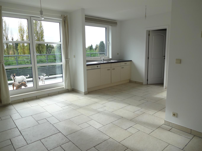 Appartement - Waterloo - #3210298-0