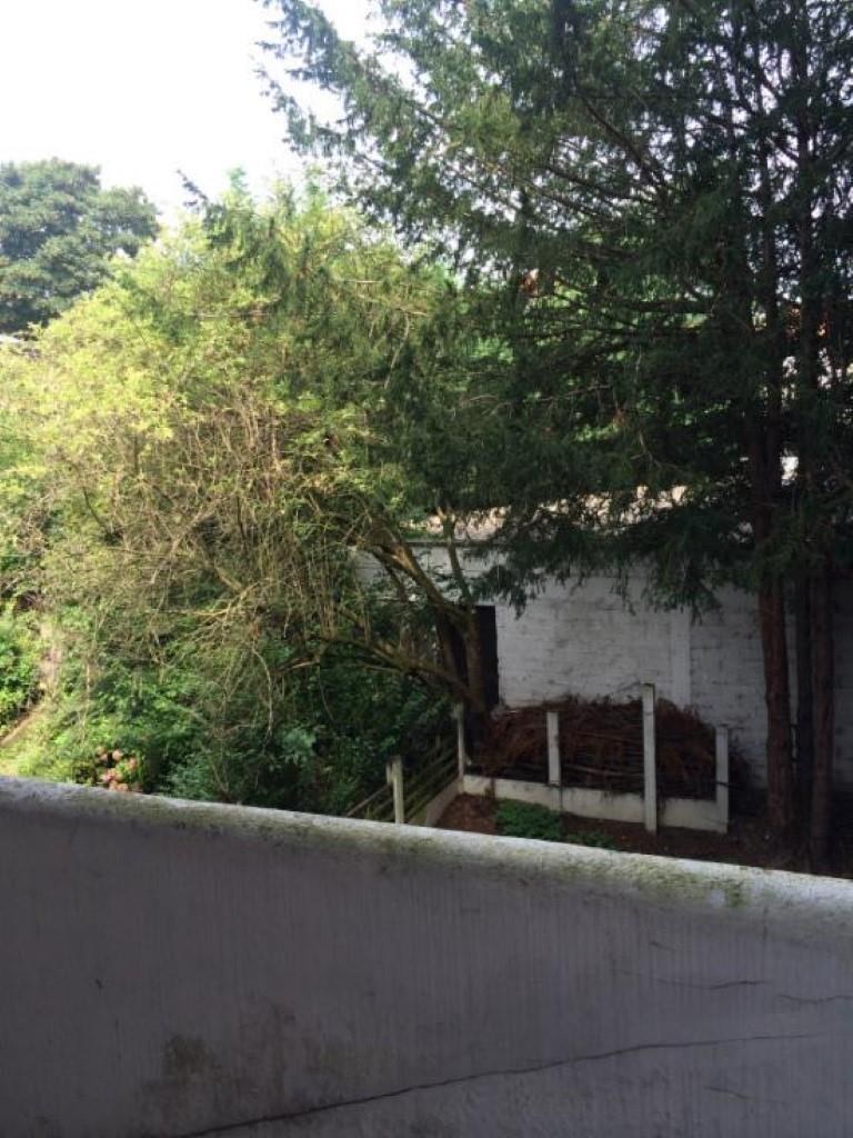 Appartement - Woluwe-Saint-Pierre - #1980582-7