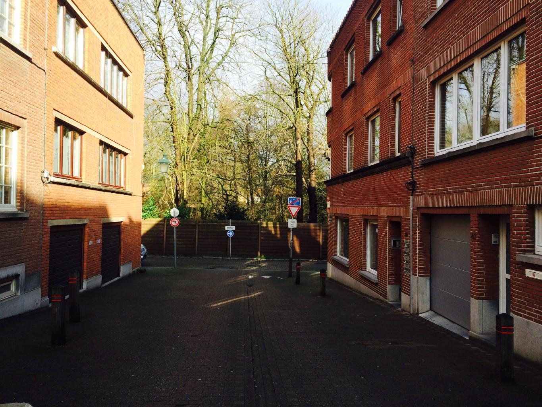 Maison - Woluwe-Saint-Pierre - #2283908-2