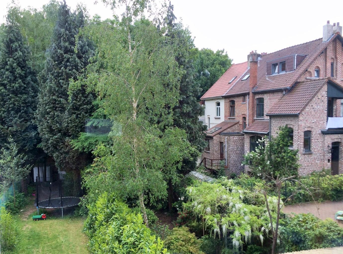 Maison - Woluwe-Saint-Pierre - #2691149-12