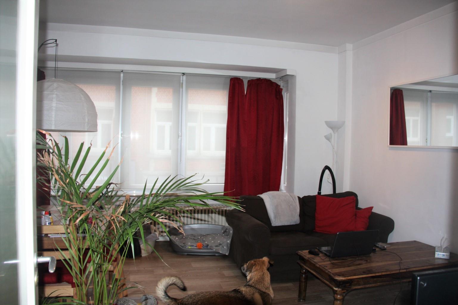 Appartement - Woluwe-Saint-Pierre - #3268994-2