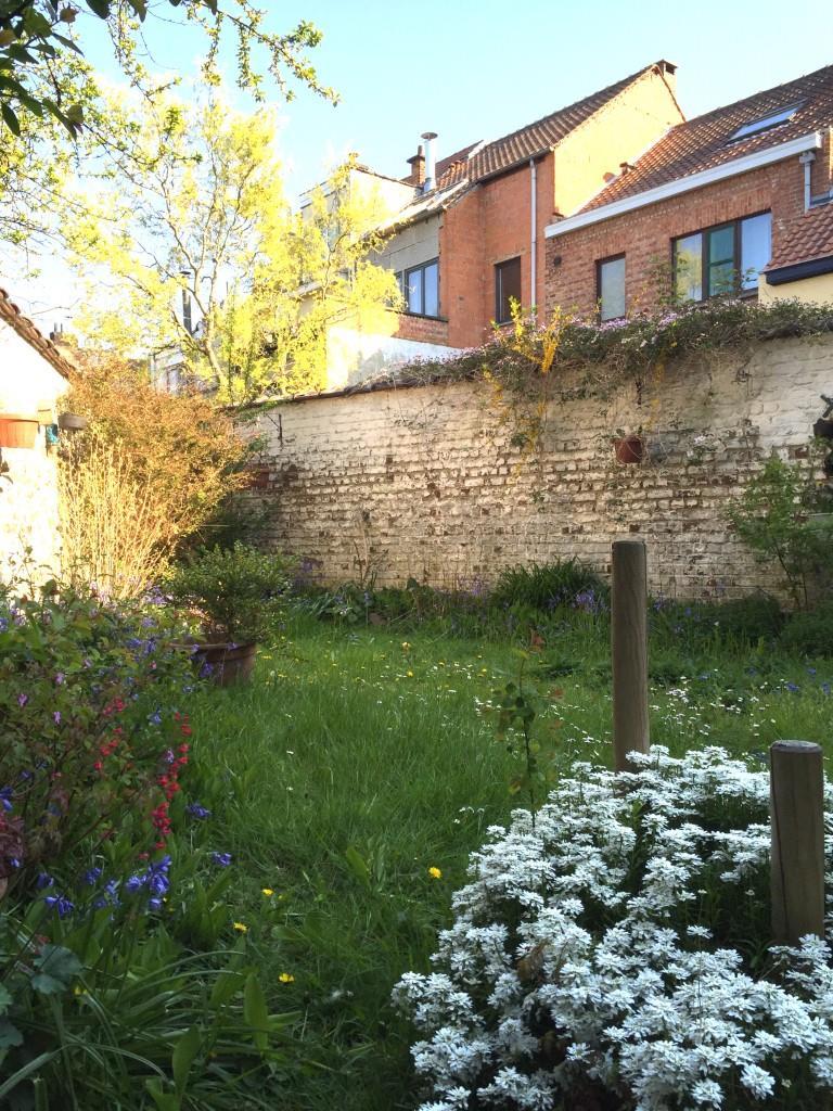 Maison - Woluwe-Saint-Lambert - #3364159-5