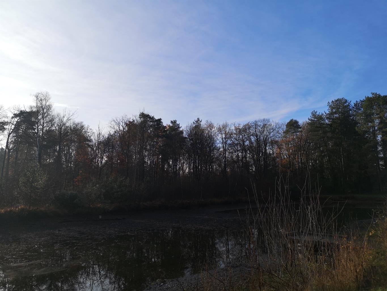 Huis - Hulshout - #4240023-6