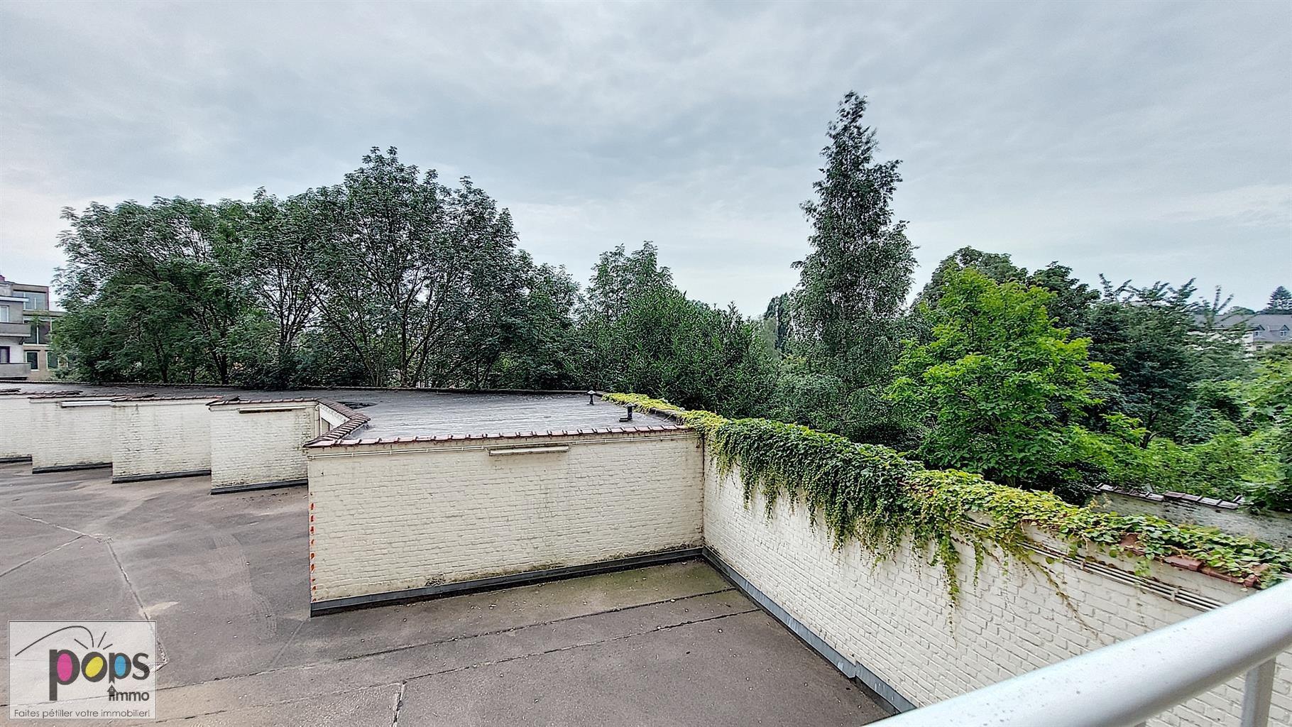 Rez-de-chaussée - Forest - #4496383-93