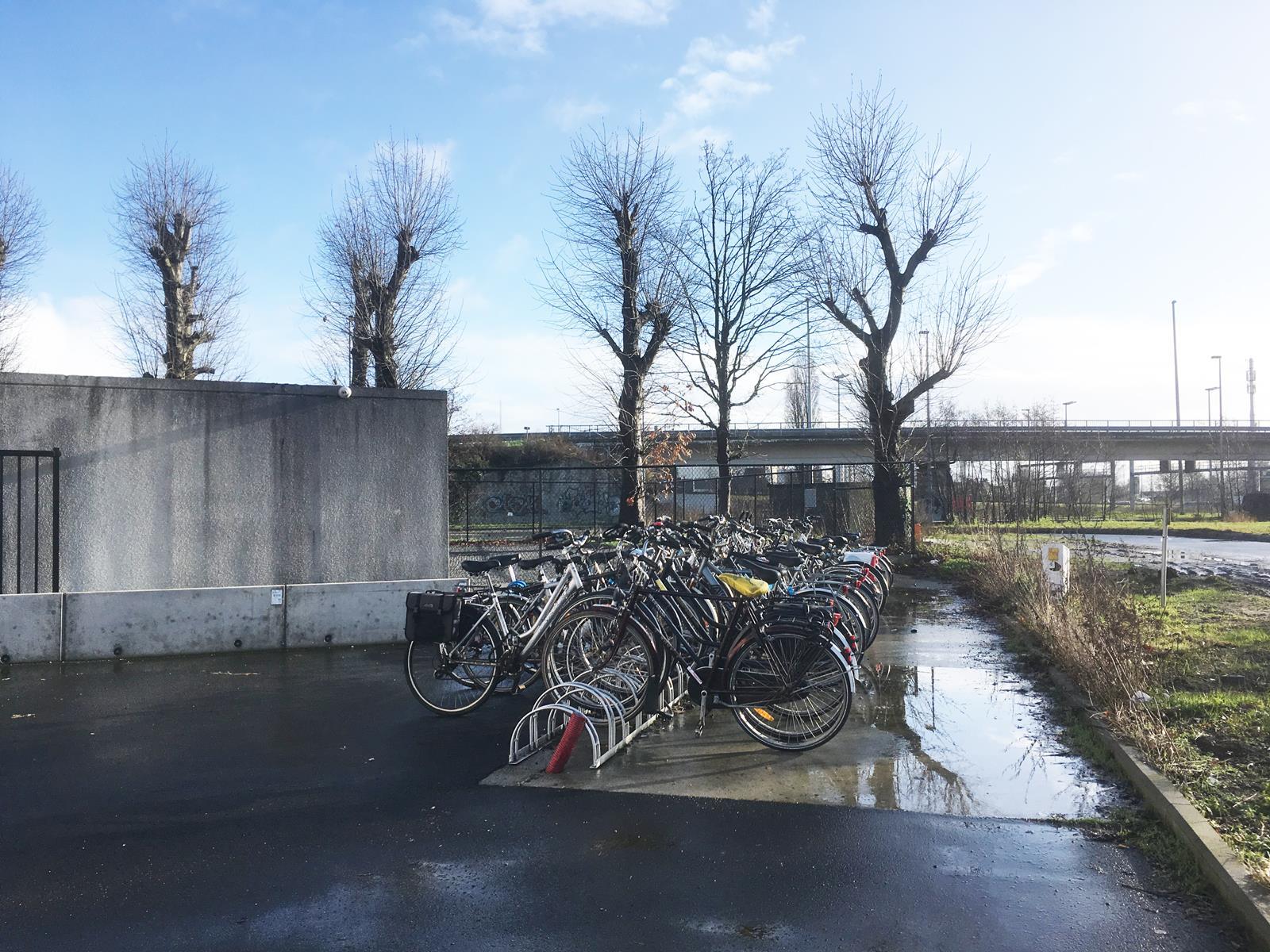 Studio Gent