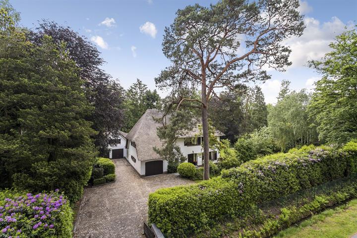 Villa met zwembad te Koningshof op 4.492m².