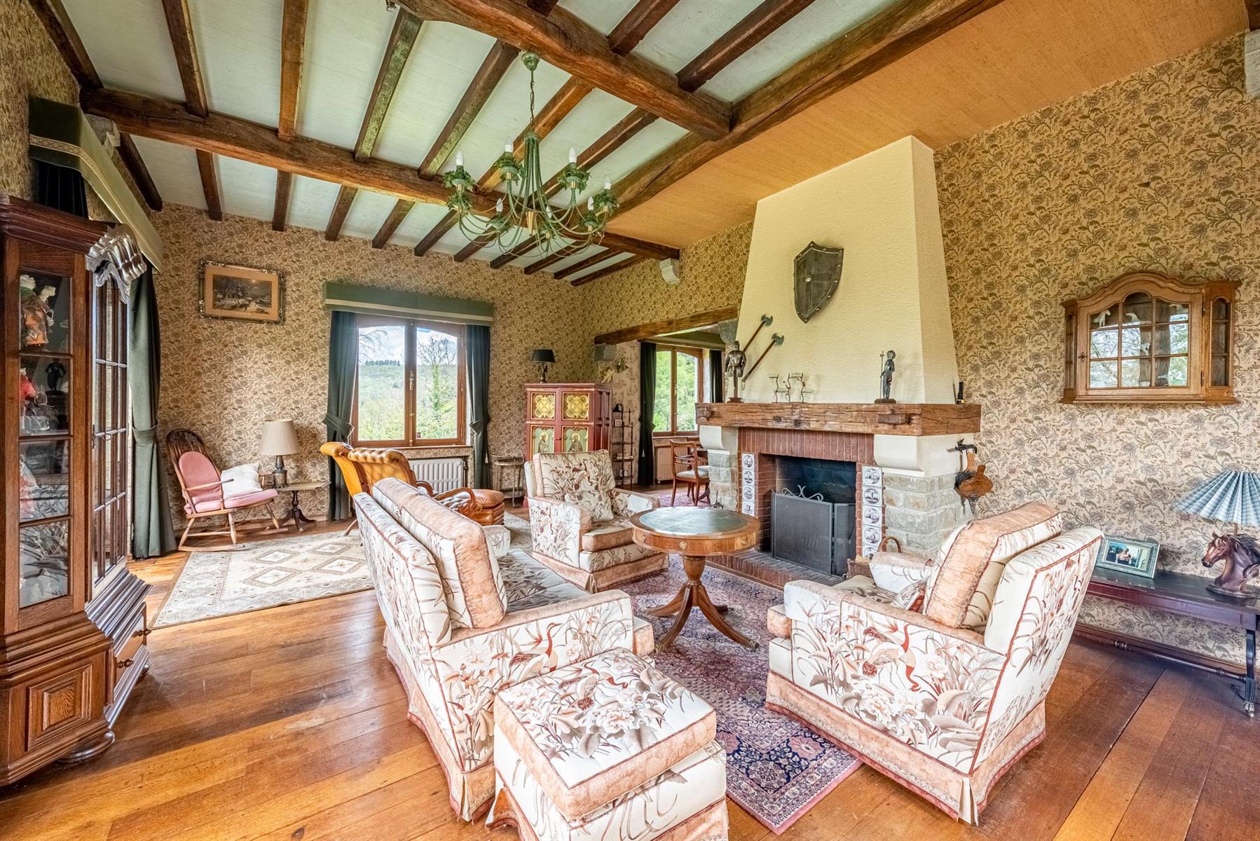 Villa - Houyet - #4357076-5