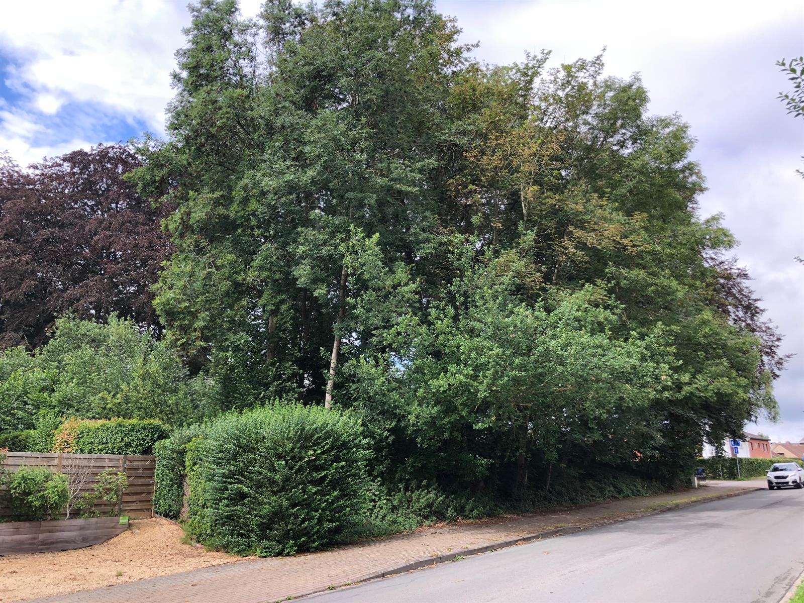 Terrain à bâtir - Ottignies-Louvain-la-Neuve - #4092046-0