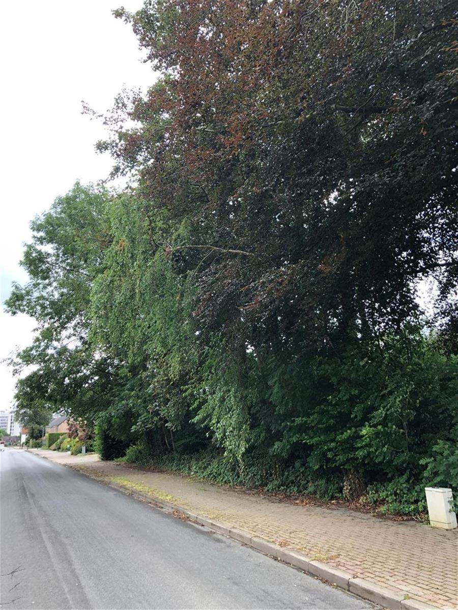 Terrain à bâtir - Ottignies-Louvain-la-Neuve - #4092046-4