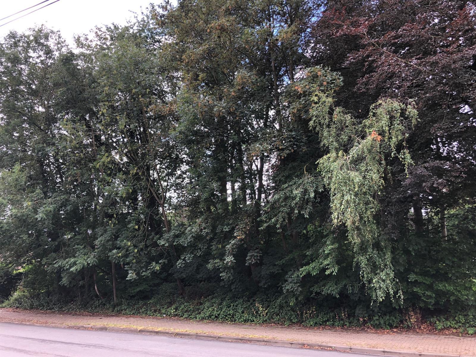 Terrain à bâtir - Ottignies-Louvain-la-Neuve - #4092046-3