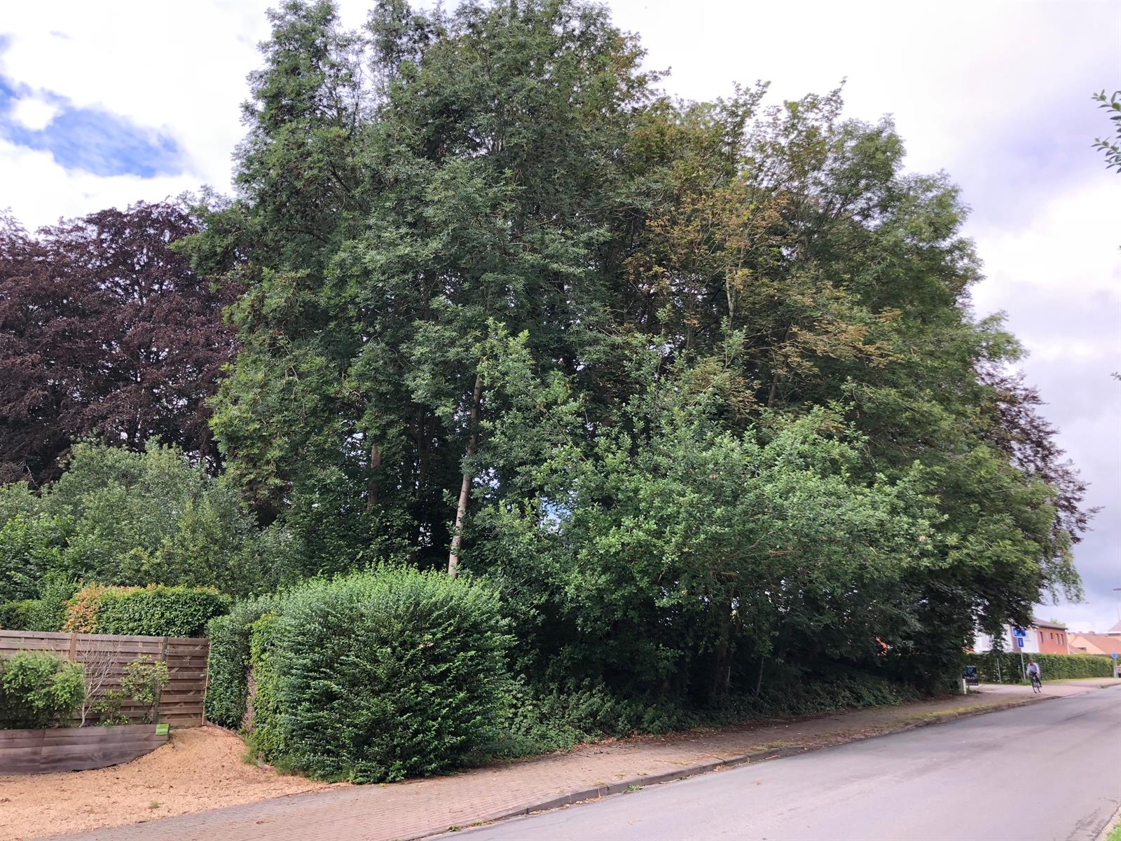 Terrain à bâtir - Ottignies-Louvain-la-Neuve - #4092046-5