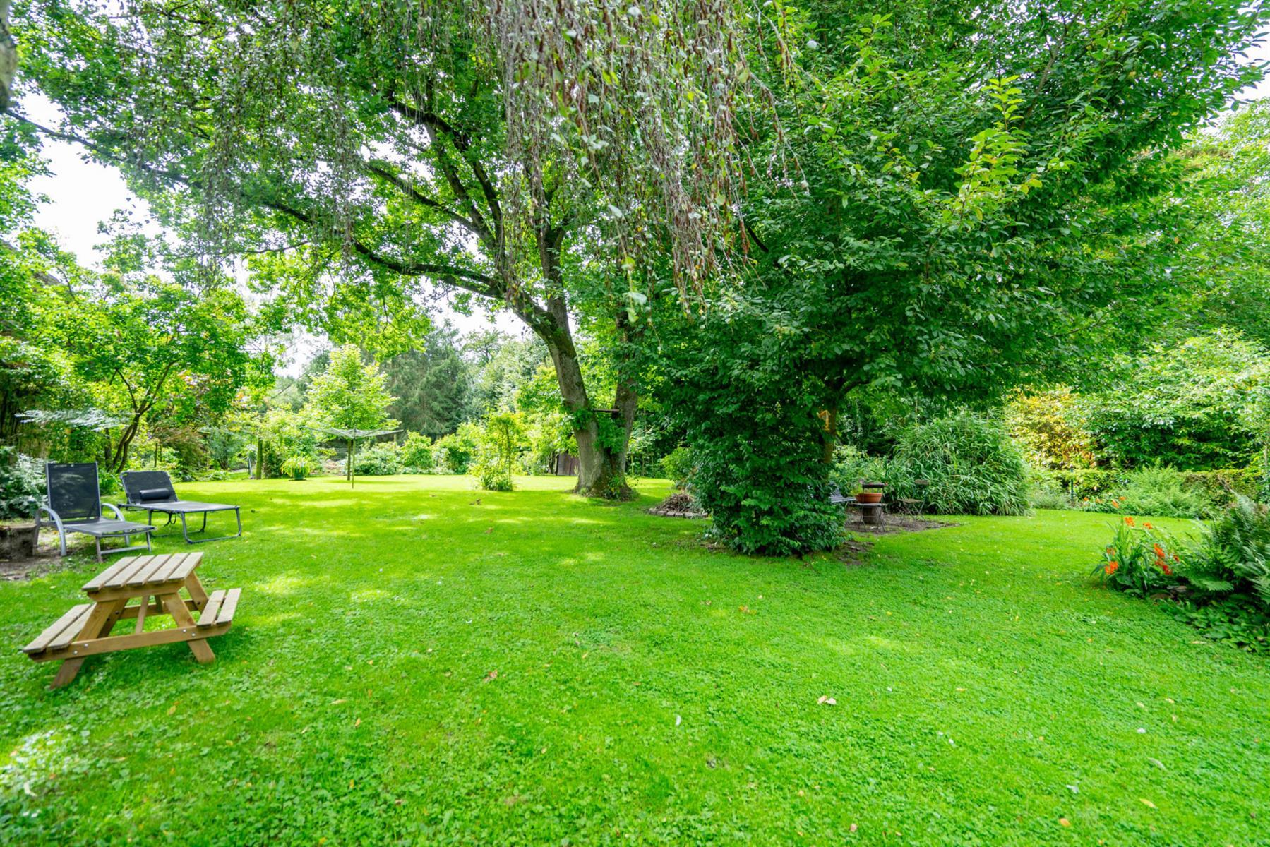 Maison - Nil-saint-vincent-saint-martin - #4437434-22