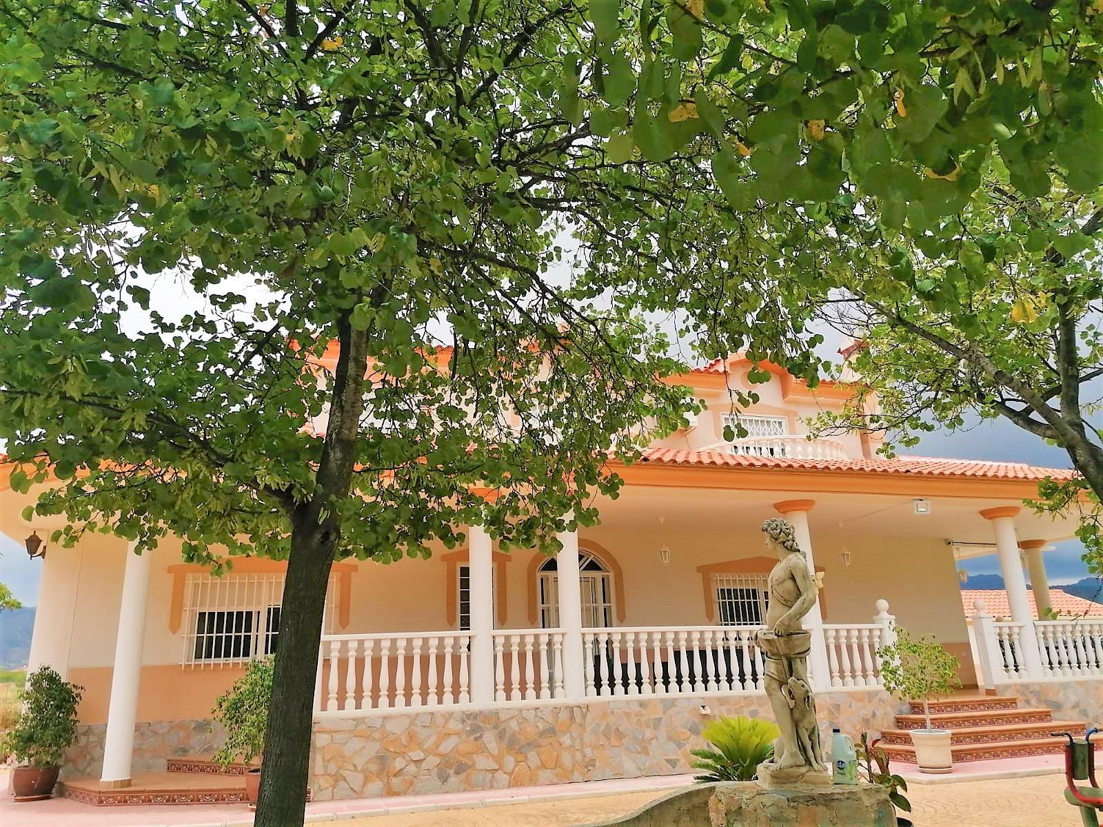 Maison - Murcia - #4134055-5