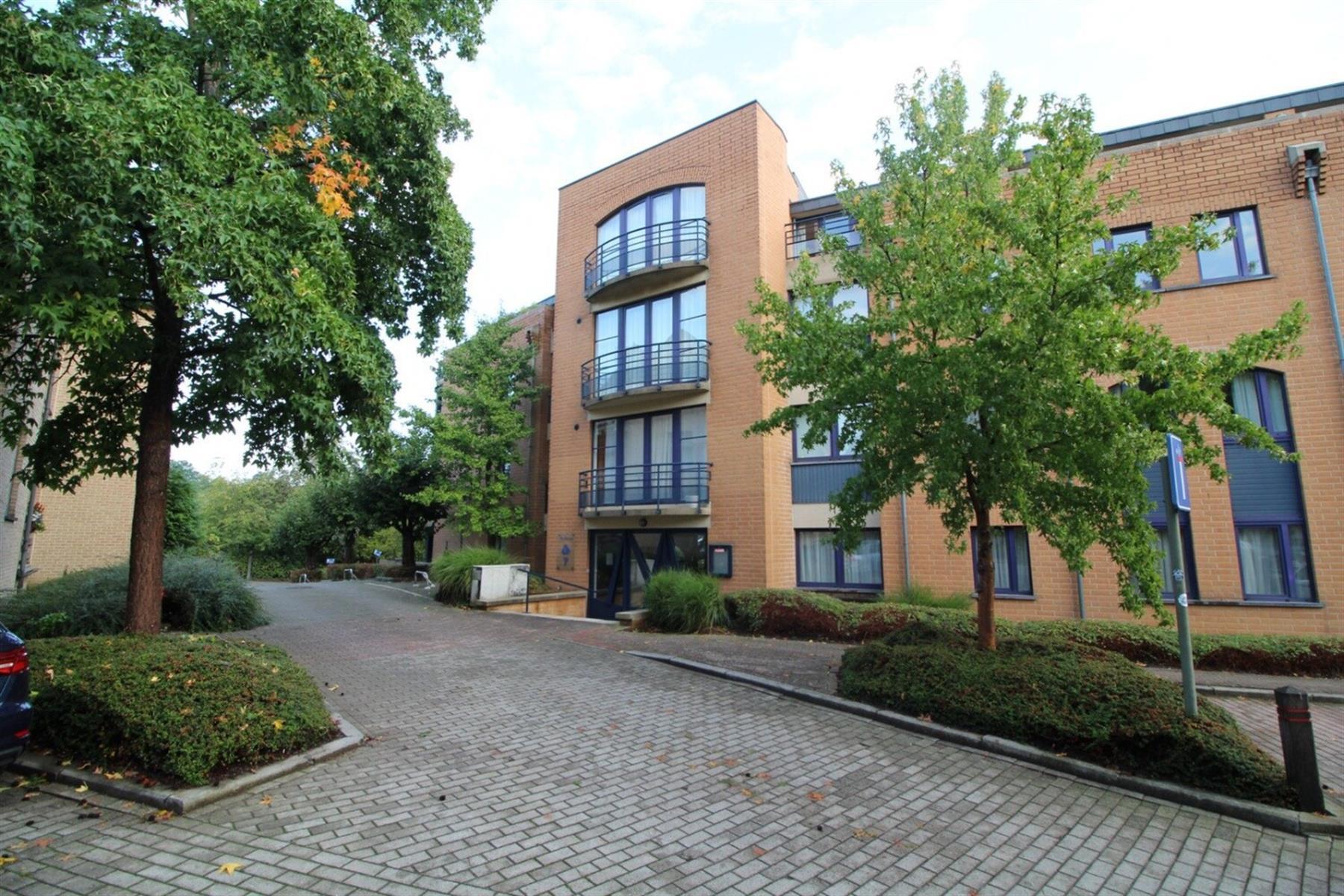 Rez-de-chaussée - Ottignies-Louvain-la-Neuve - #4158374-0