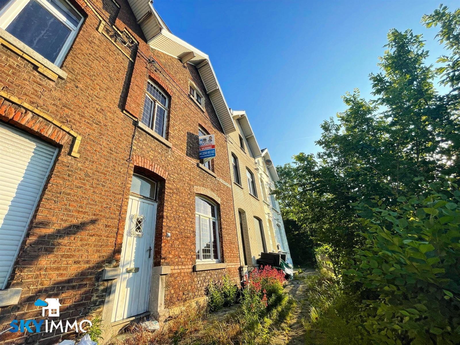 Maison - Seraing Jemeppesur-Meuse - #4383857-0